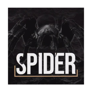 HUNTER FIHSING UP BRUDDEN – SPIDER